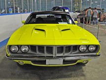 Muscle Car Jungle Where Good Cars Go Wild